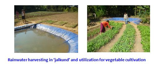 an essay on rain water harvesting in india 1049 wards essay on rainwater harvesting 7 important components of rainwater harvesting system in india 1354 words essay on rainwater harvesting in india.